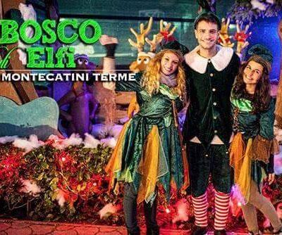 Bosco degli Elfi – MonteFantasy